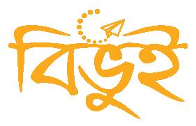 Bibhui Logo2